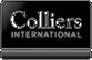 Starptautiskais komerciālo nekustamo īpašumu konsultāciju uzņēmums